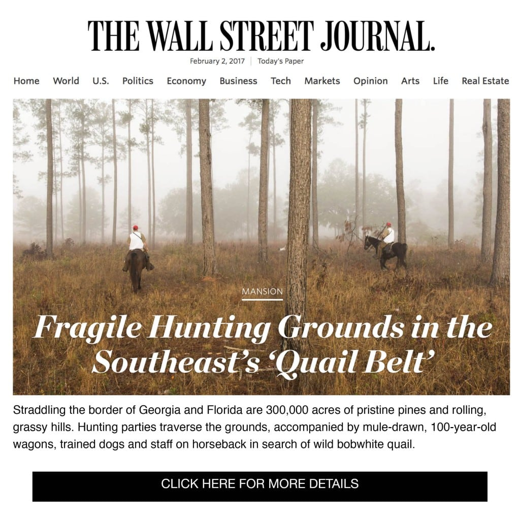 Read all about it! The Wall Street Journal features the Red Hills Region, The Wright Group and more – check it out here!