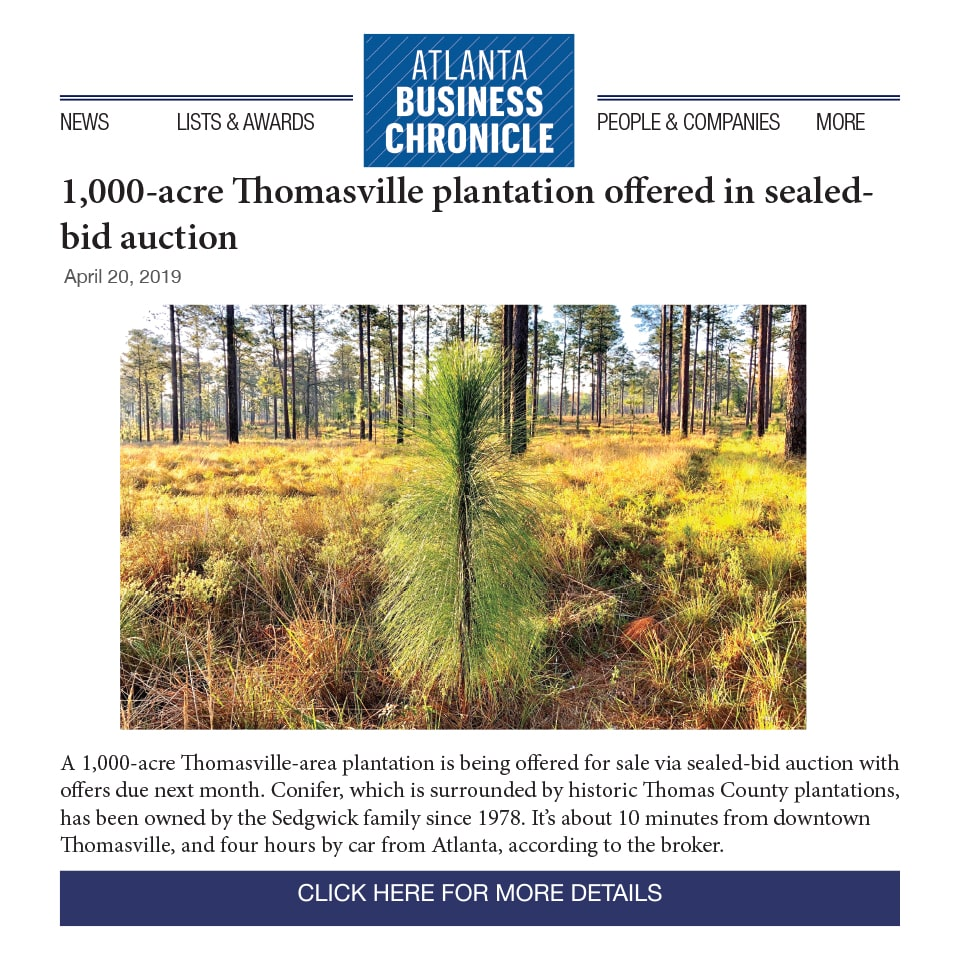 Conifer Hits the Market Atlanta Business Chronicledives into our latest offering, Conifer – 1007 +/- acres in the heart of plantation country